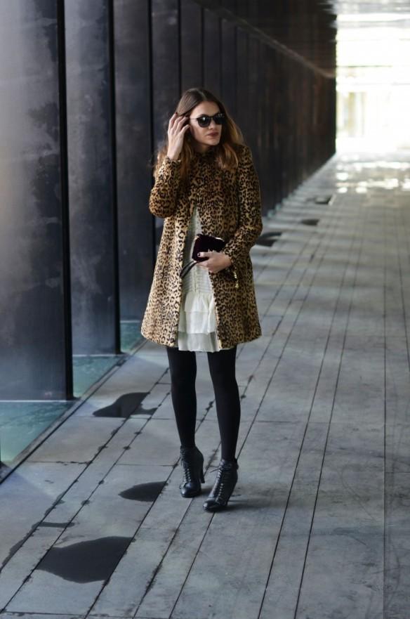 leopard-3-750x1132